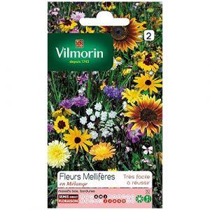 Vilmorin Mélange de fleurs méllifères multicolore