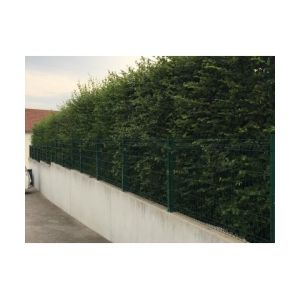 Cloture & Jardin Kit Grillage Rigide Vert 10M - Fil 4mm - Sur Platines - 1.53 mètre