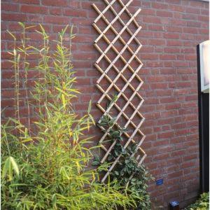 Nature Treillis extensible en bambou 100x200cm