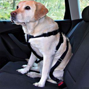 Trixie Ceinture de sécurité Friends on tour pour chiens Taille S