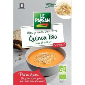 LE PAYSAN Quinoa à germer