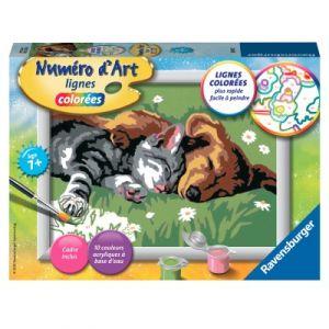 Ravensburger Comme chien et chat - Peinture au numéro Numéro d'Art lignes colorées