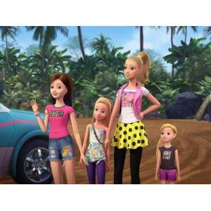 Coffret Barbie et ses Soeurs 4 films
