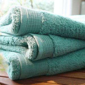 Blanc des vosges Eponge unie Gant Coton Celadon 16x22 cm