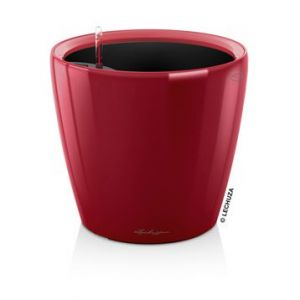 Lechuza Pot à réserve d'eau Classico Rouge scarlet Ø.43 x H.40 cm