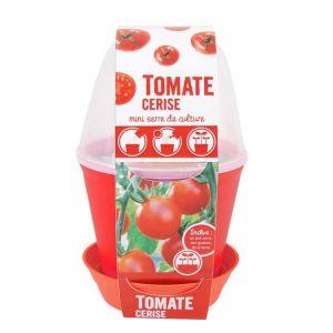 Radis et capucine Pot cloche Tomate cerise Bio