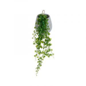 """Plante Artificielle & Pot """"Lierre"""" 58cm Gris Prix"""
