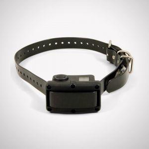 Sportdog SBC-10R-E - Collier anti-aboiement rechargeable 10R