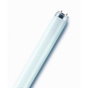 Osram Tube fluocompact - 58 W - 1.5 m - Blanc industriel - 4 000 K - Lumière du jour