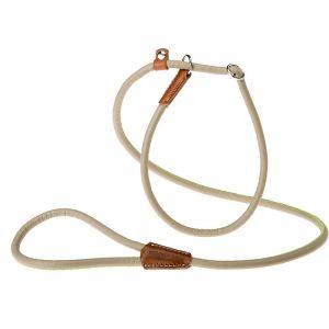 Ferplast DERBY GC Laisse avec collier semi-étrangleur pour chiens en simili cuir. Intérieur en nylon. Deux tailles et deux couleurs.. Variante 10/160 - Mesures: Ø 10 mm x L 160 cm - Taupe