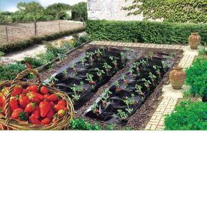 Intermas Gardening Film paillage spécial fraises