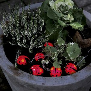 Guirlande solaire 6 Lady Bugs - STAR