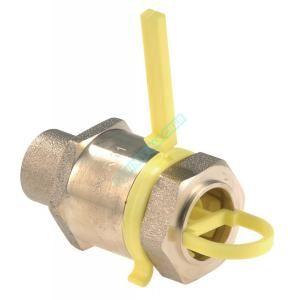 Clesse Raccord droit RC-1P-PEHD-CU à serrage mécanique pour PEHD à braser sur tube cuivre D22 calibre 20 Réf CD02167