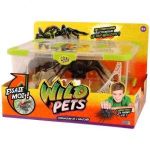 Kanaï Kids Terrarium avec araignée exclusive Wild Pets saison 2