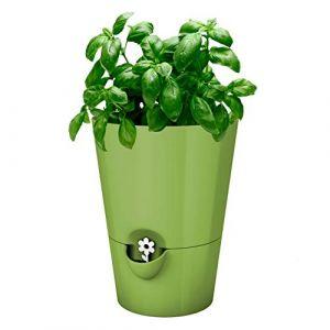 Emsa Pot Fresh Herbs 13 cm Vert, 28x28x18 cm