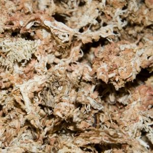 Radis et capucine Sphaigne du Chili sac de 150 gr