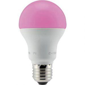 Renkforce Ampoule LED E27 1221246 forme standard 4.8 W RVB (Ø x L) 60 mm x 110 mm EEC: n/a à couleur changeante, fonctio