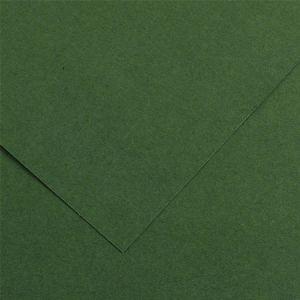 Canson 200040384 - Feuille Iris Vivaldi 50x65 240g/m², coloris vert sapin 31