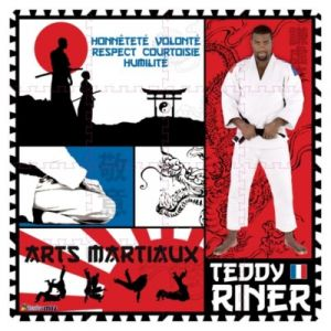 LGRI Tapis puzzle Teddy Riner