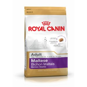 Royal Canin Bichon Maltais Adult - Sac de 1,5 kg (Mini breed)
