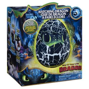 Spin Master Krokmou Eclosion interactive Dragons 3