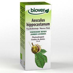 Biover Extrait liquide marron d'inde pour des jambes légères