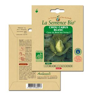 La Semence Bio Graines de Chou Cabus Blanc