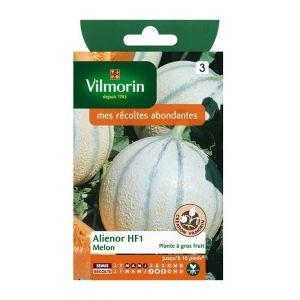 Vilmorin Melon Alienor HF1 - Sachet de graines