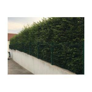 Cloture & Jardin Kit Grillage Rigide Vert 30M - Fil 4mm - Sur Platines - 1.53 mètre