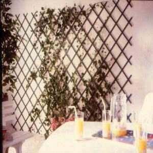 Intermas Gardening 170202 - Treillis en PVC 1 x 2 m