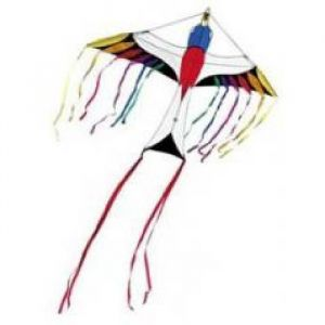 Hq Tropical Bird Single Line Kite - Rainbow
