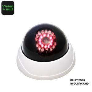 Bluestork BS-DUMYCAM/D - Caméra de surveillance factice avec vision nocturne