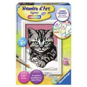 Ravensburger Joli chaton gris - Peinture au numéro Numéro d'Art lignes colorées