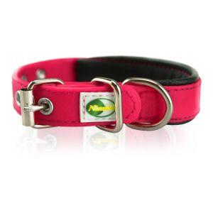 Supersteed Collier pour chien ajustable avec boucle - 375-455 mm, rose