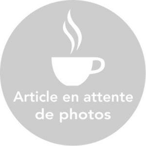 Magimix 505741 - Cartouche filtrante pour robot café