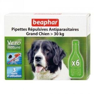 Beaphar Pipettes répulsives antiparasitaires Grand Chien > 30 kg