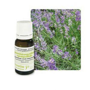 Pranarôm Huile essentielle lacande craie (lacandula angustifolia) - 10 ml
