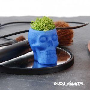 Radis et capucine Collier modèle Tête de mort bleu et lichen stabilisé