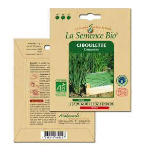 La Semence Bio Graines de Ciboulette