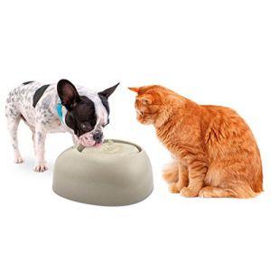 Imac Fontaine à eau CIOTTOLI 2L Chat et Petit chien