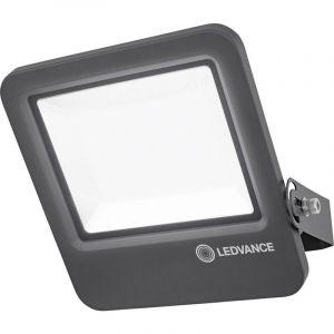 Osram Ledvance - Projecteur LED ENDURA LED/100W/230V IP65