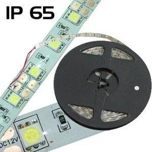 Barthelme Ruban LED avec câble à extrémités ouvertes Y51515215 182004 12 V 502 cm blanc froid 1 pc(s)