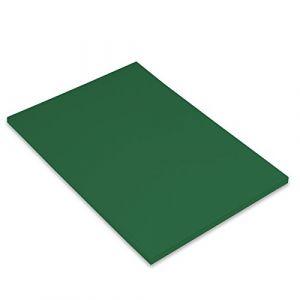Canson Iris Vivaldi Papier couleur A4 Lisse 185g/m² 21 x 29,7 cm Vert Sapin Lot de 50