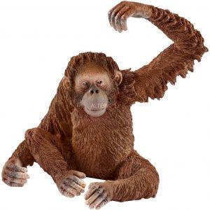 Schleich 14775 - Orang-Outan femelle