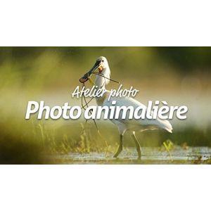 Atelier photo : La photo animalière [Windows]