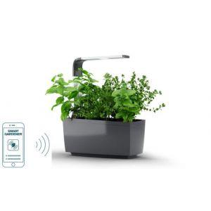 Tregren Potager connecté T6 Gris - 6 plantes