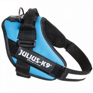 Julius K9 Harnais IDC Power aquamarine XXS 33 - 45 cm