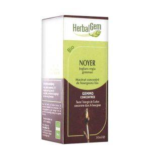 Herbalgem Noyer bio macérat concentré de bourgeons, 30 ml