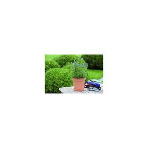 Elho Pot 15cm Green Basics coloris terre cuite