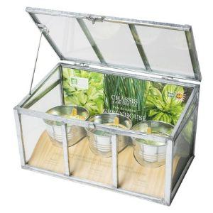 Radis et capucine Mini châssis en verre avec 3 pots en zinc d'aromatiques bio